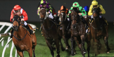 Fixed odds horse racing betting rules t20 world cup 2021 betting tips